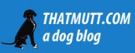 Best Dog Food Blogs 2019 thatmutt.com